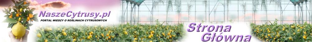 Portal wiedzy o roślinach cytrusowych